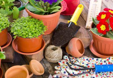 Cómo decorar el jardín de tu casa